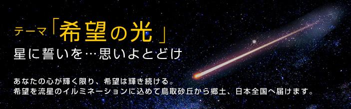 2011_theme2.jpg